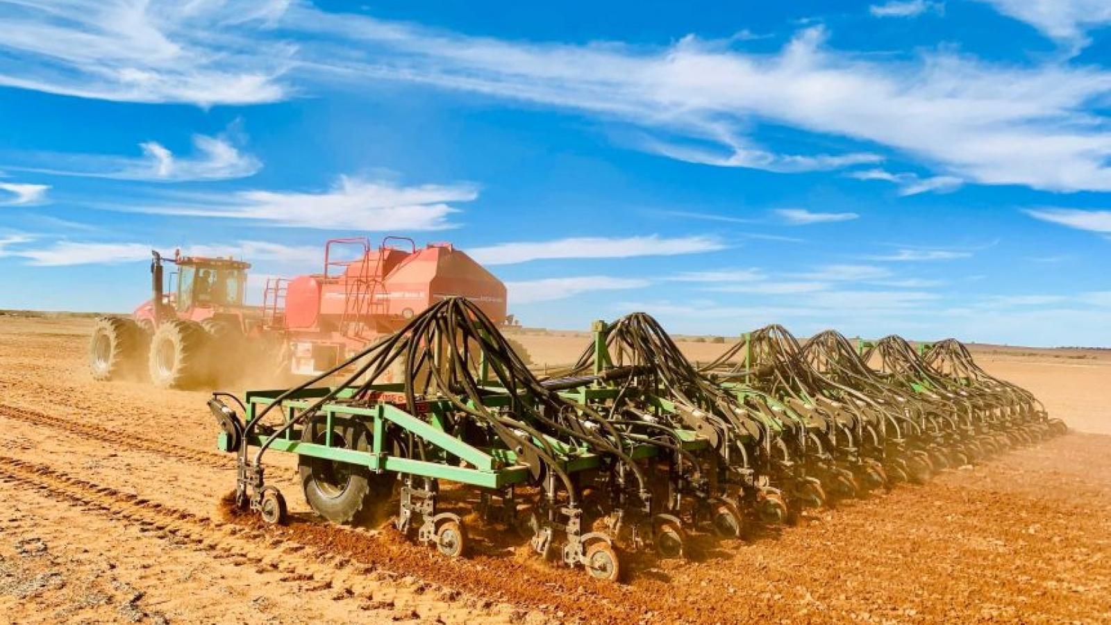 Australia đề nghị WTO giải quyết tranh chấp giữa nước này với Trung Quốc về thuế lúa mạch