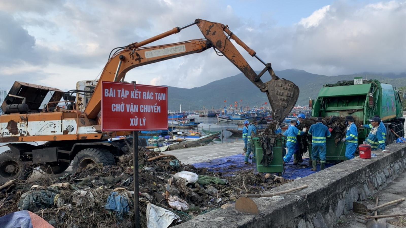 Xử lý rác ở âu thuyền Thọ Quang, Đà Nẵng mới giải quyết phần ngọn
