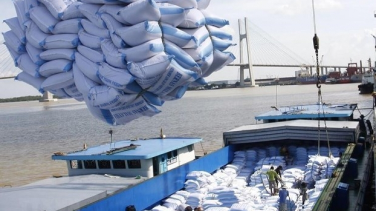 Rice exports to see bright outlook this year