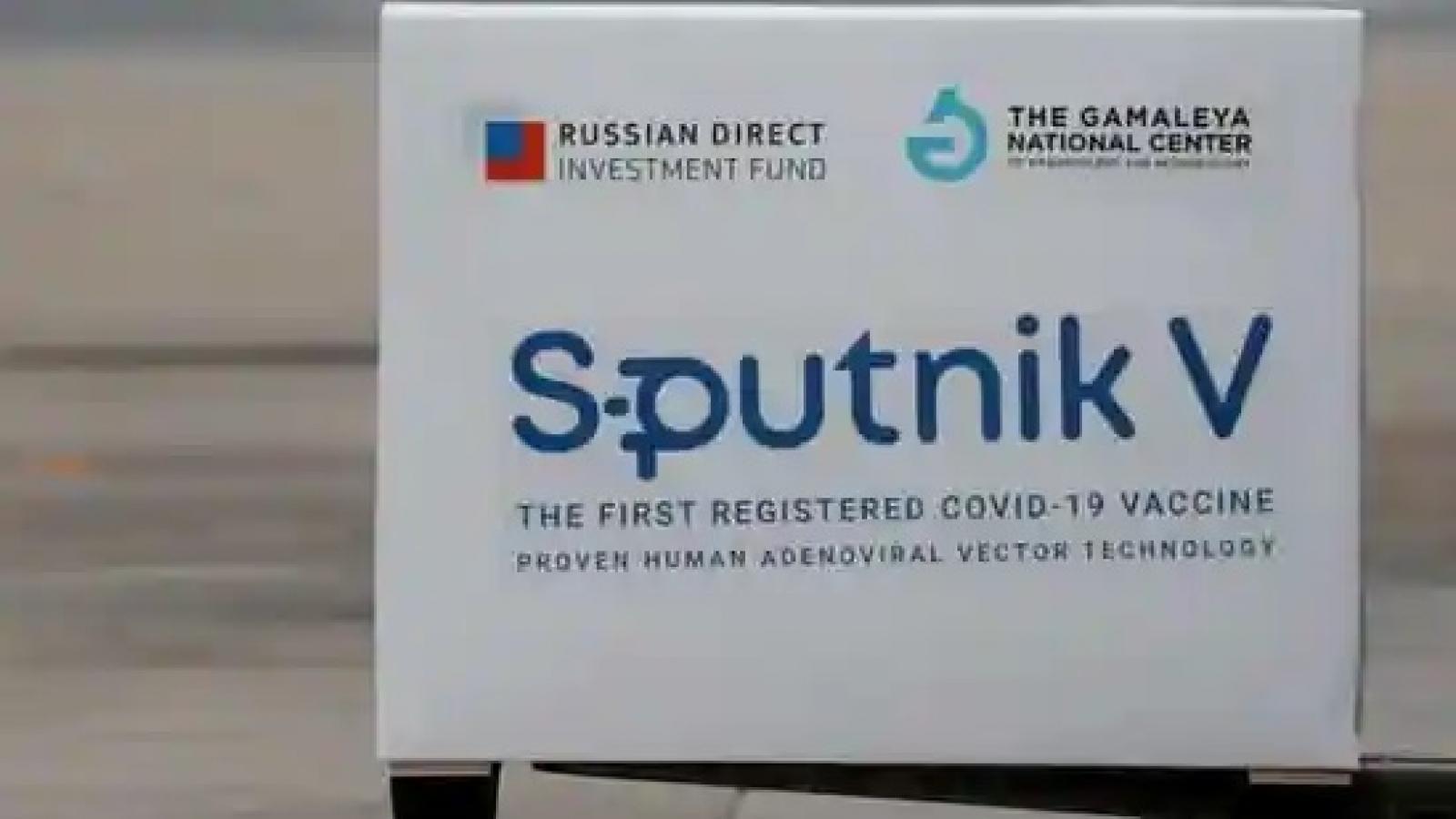 4 công ty dược Ấn Độ được quyền sản xuất vaccine Sputnik V của Nga