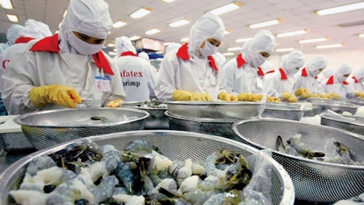 China increases imports of Vietnamese seafood