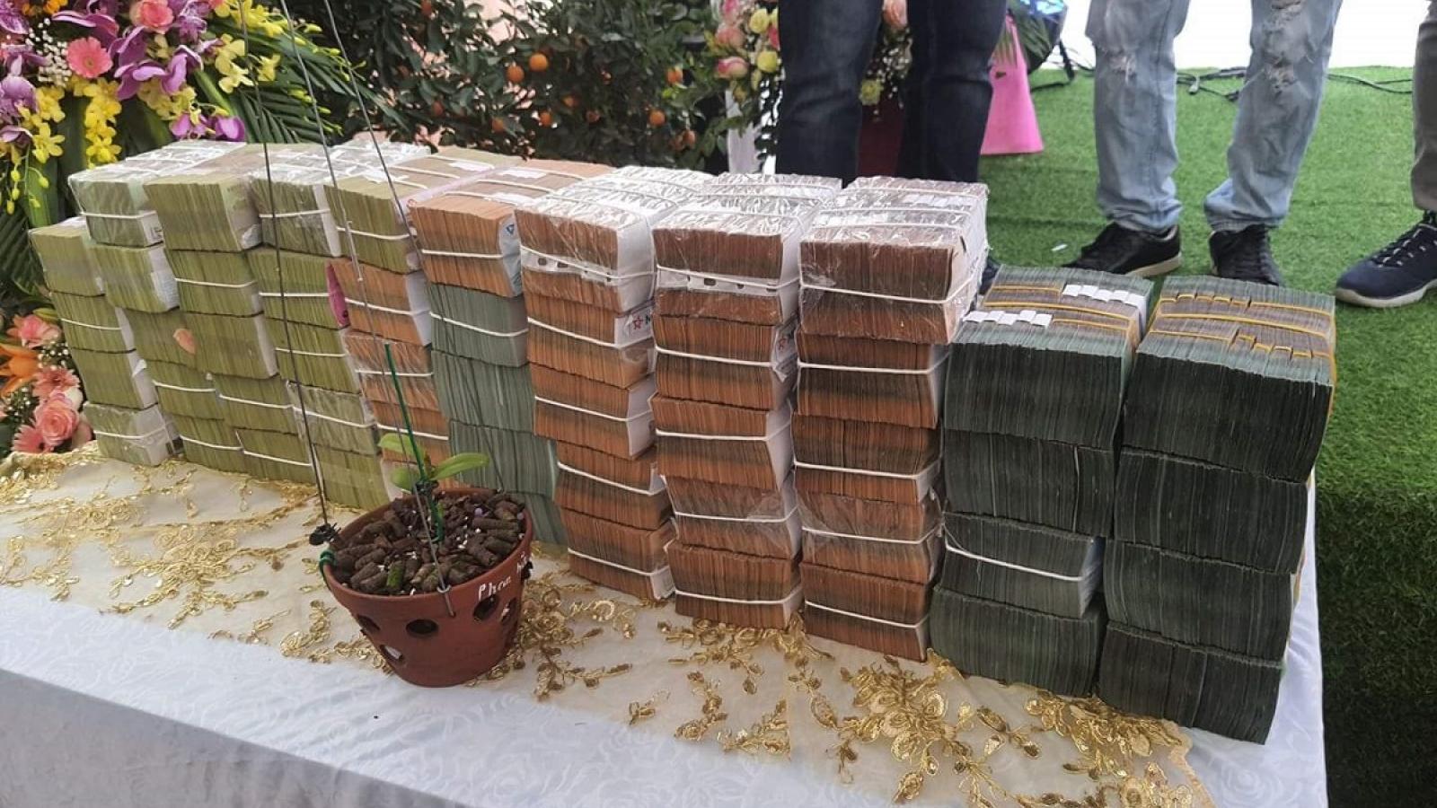 Nghi vấn quanh vụ mua bán lan var Ngọc Sơn Cước 250 tỷ đồng ở Quảng Ninh