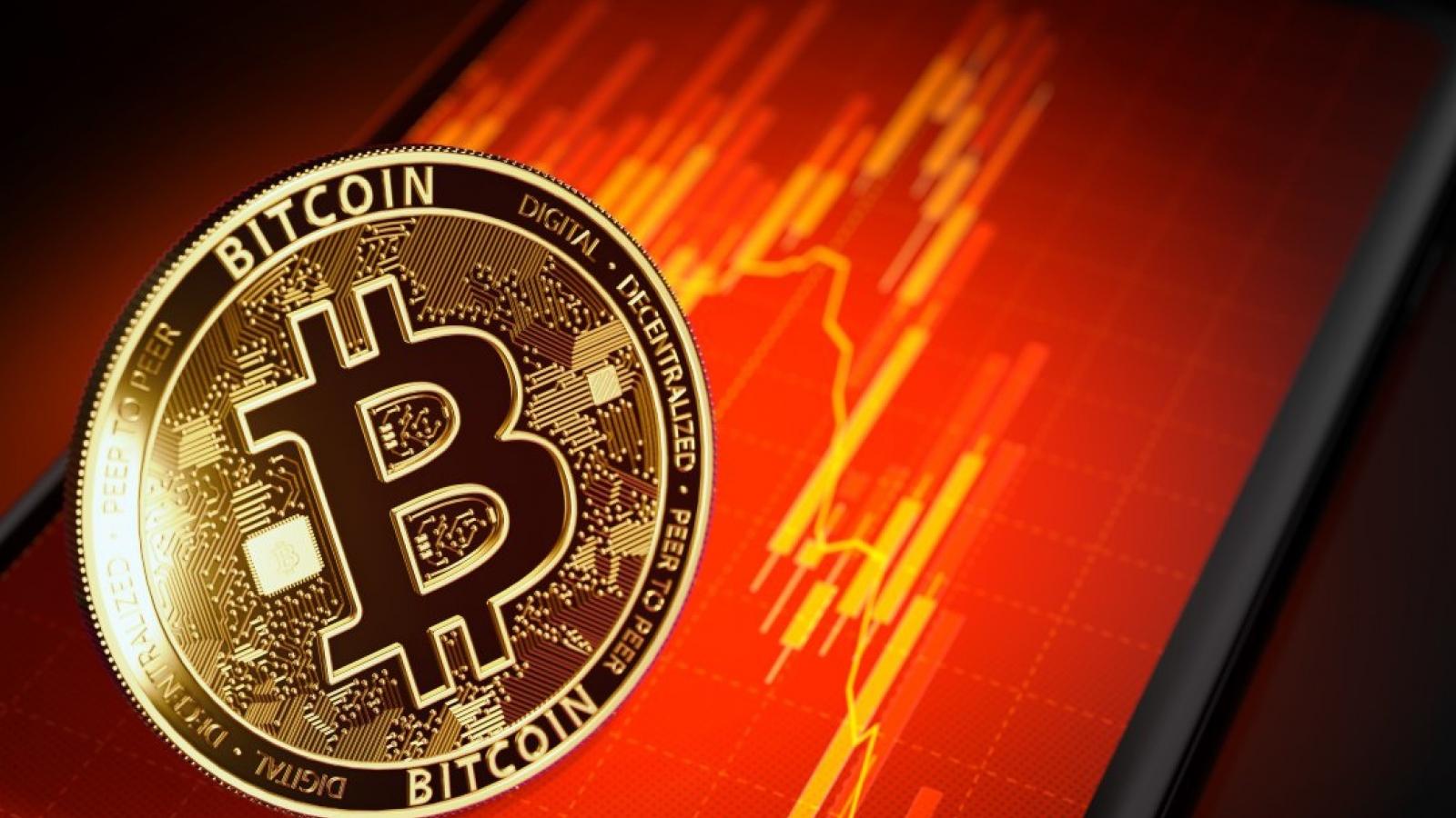 """Giá Bitcoin rơi """"không phanh"""""""