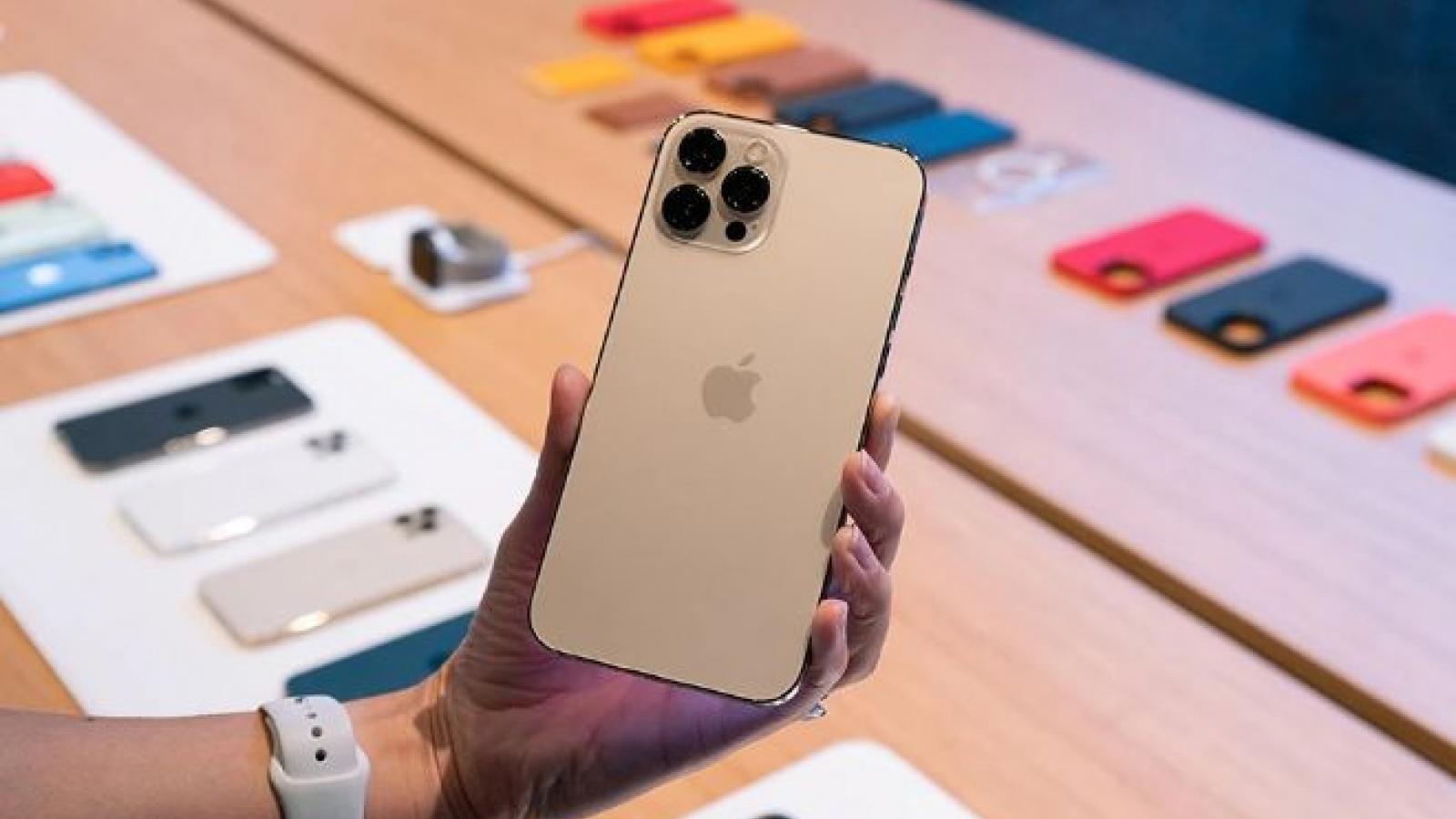Đây là chiếc iPhone ế ẩm đang được giảm đến 7,1 triệu đồng