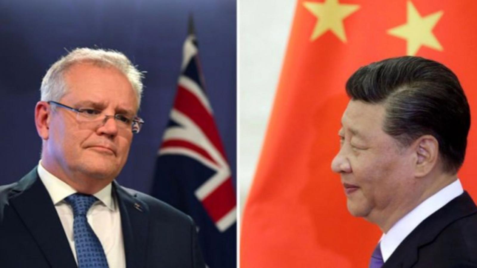 """Vì sao Australia từ chối """"cành ô liu"""" của Trung Quốc?"""