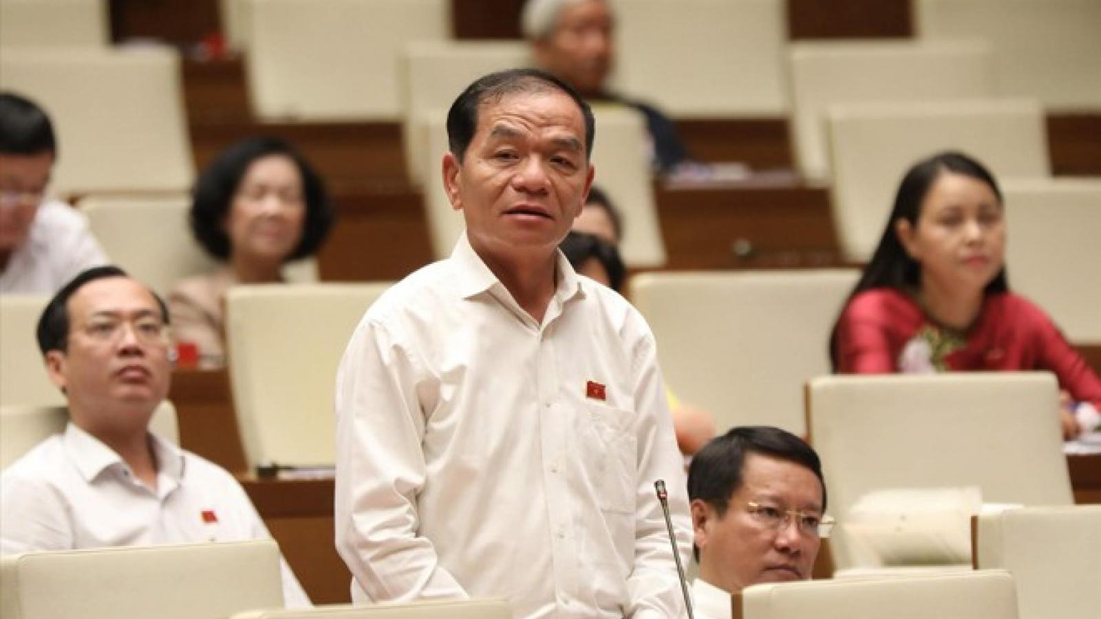 Tăng đại biểu chuyên trách để tăng chất lượng hoạt động của Quốc hội