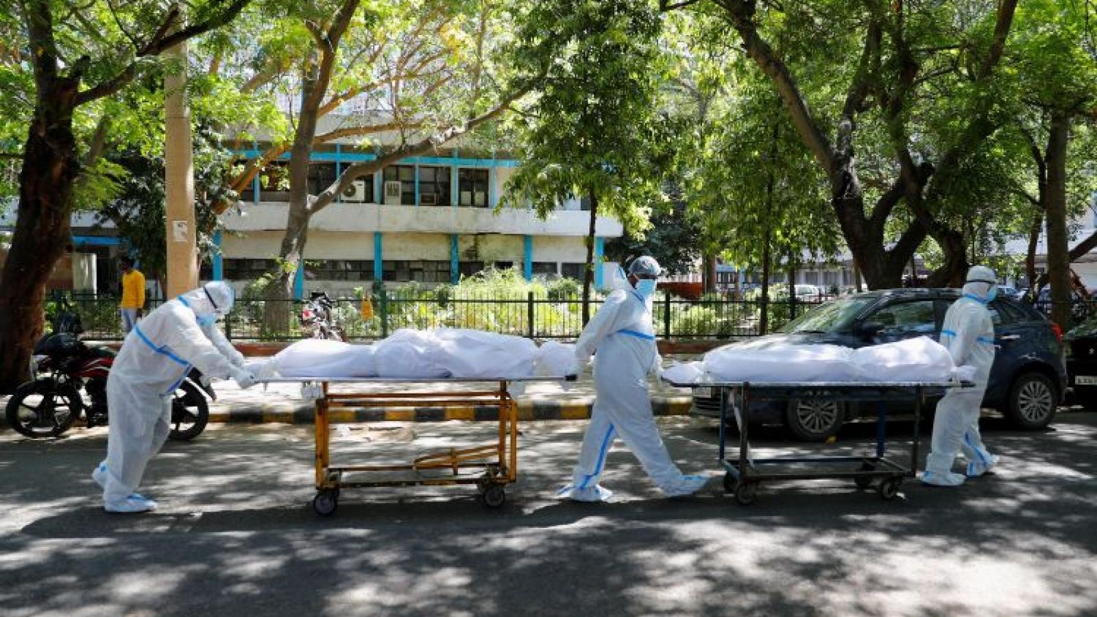Phái bộ ngoại giao Mỹ ở Ấn Độ có 2 người tử vong, hơn 100 người mắc Covid-19