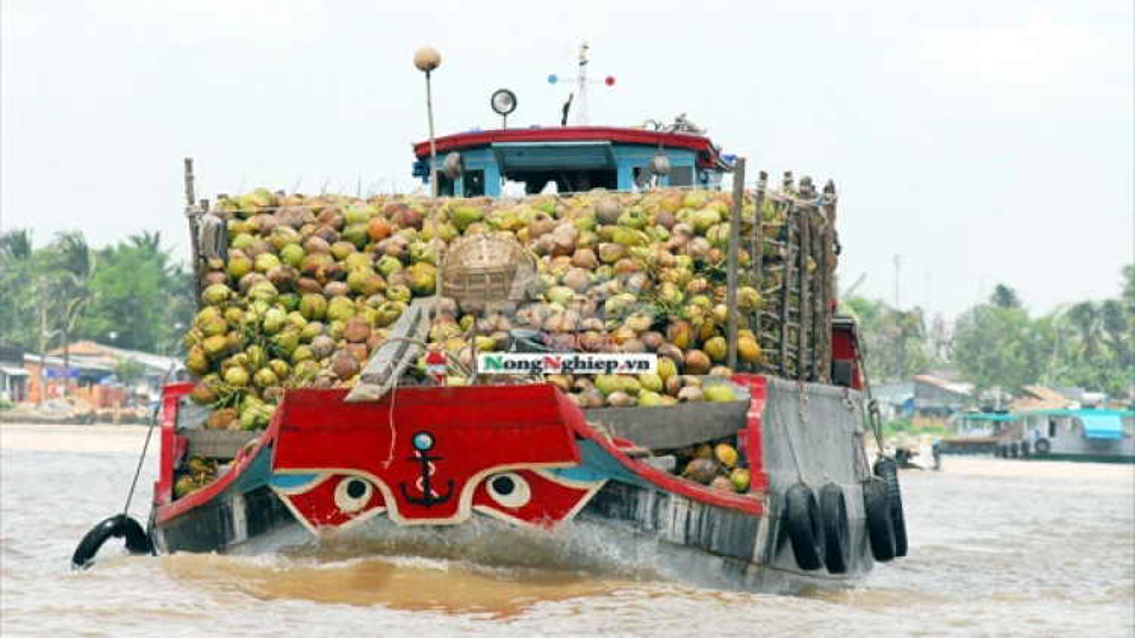 Chi phí logistics quá cao làm giảm sức cạnh tranh của sản phẩm nông sản