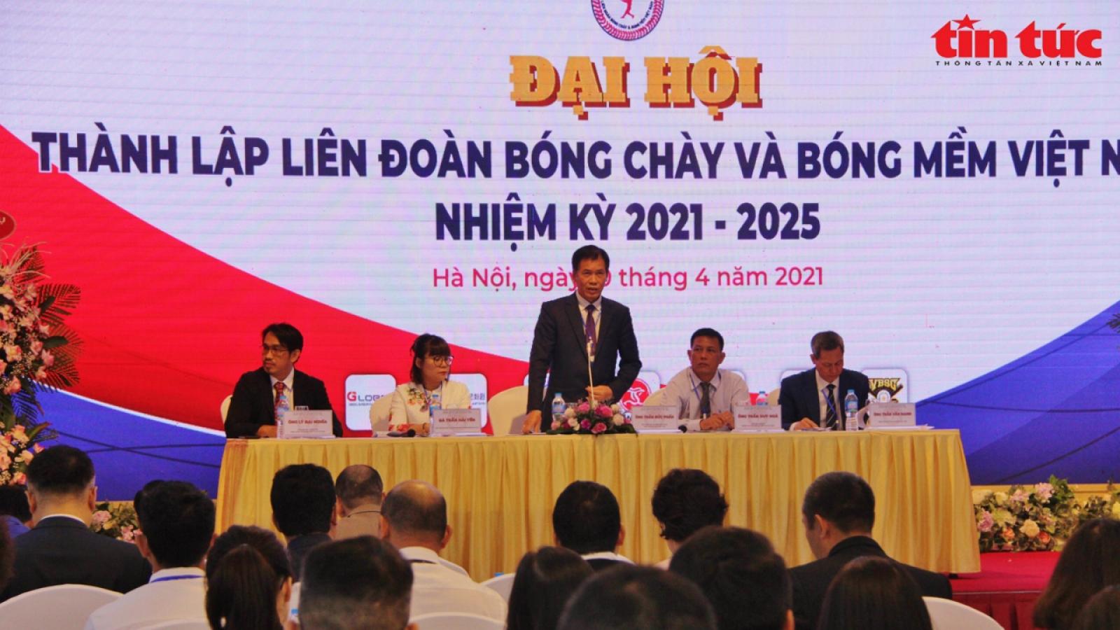 Vietnam Baseball - Softball Federation elects first head