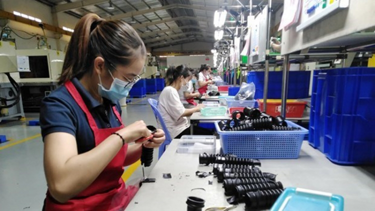 FDI in Dong Nai hits US$670 mln since beginning of year