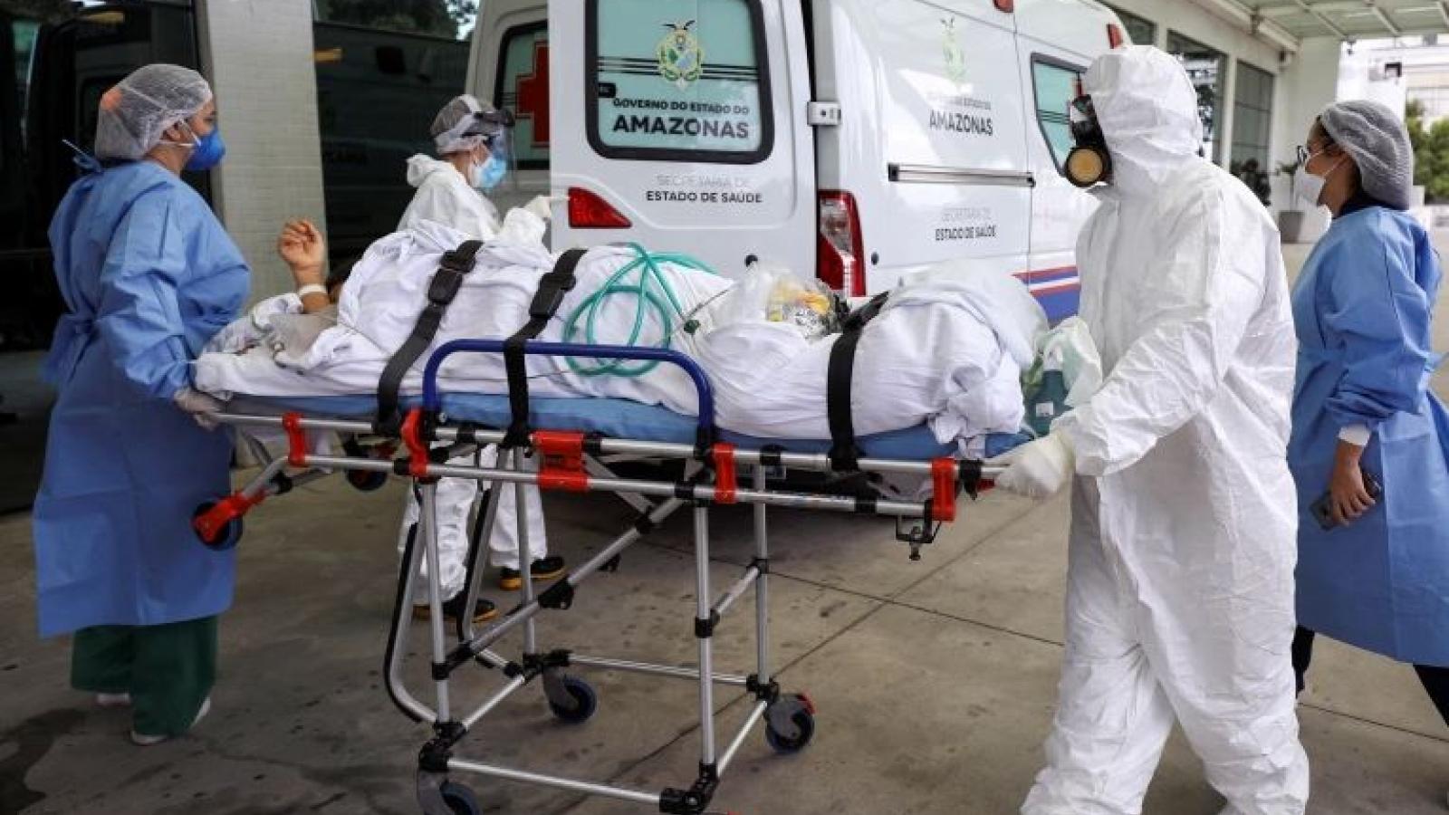Brazil xuất hiện thêm biến thể mới của virus SARS CoV-2