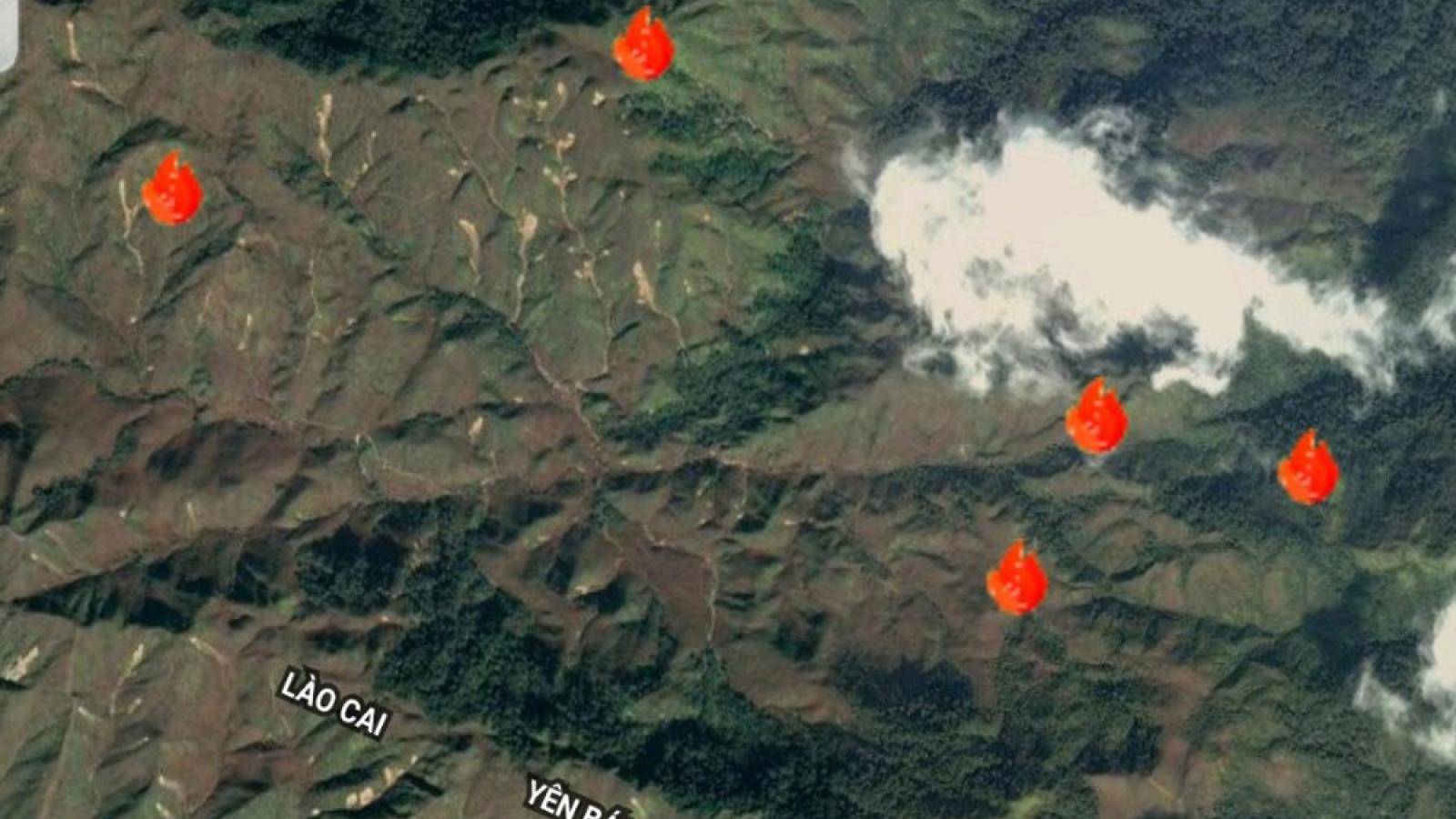 Kịp thời dập tắt đám cháy rừng tại Văn Bàn (Lào Cai)