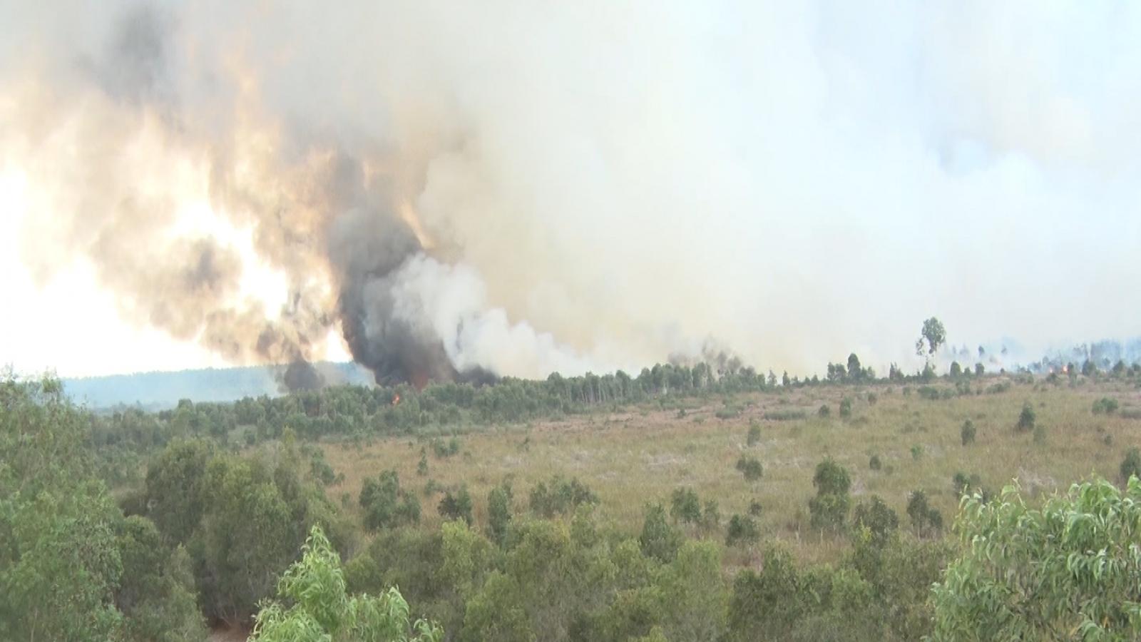 Kiên Giang điều tra nguyên nhân vụ cháy hàng chục hecta rừng tràm