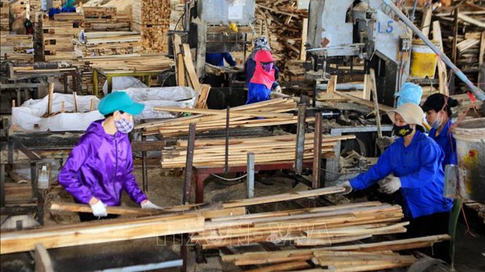 Giảm rủi ro về nguồn gốc, đảm bảo xuất khẩu gỗ bền vững