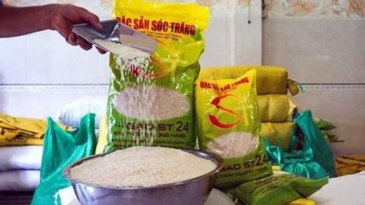 Local firms urged to boost trademark protection for ST25 rice in US