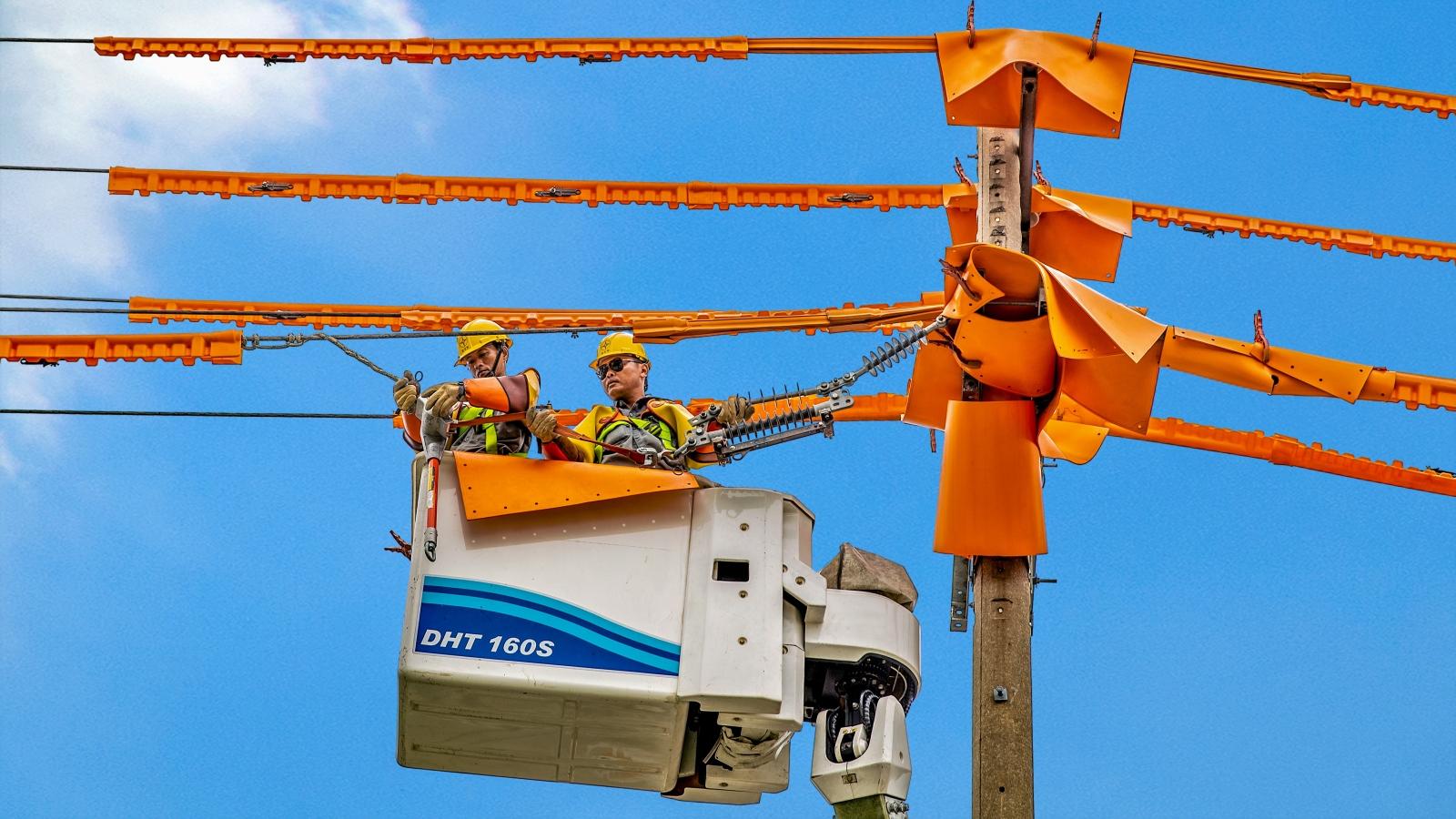 EVNSPC tích cực chuyển đổi số để phục vụ khách hàng sử dụng điện
