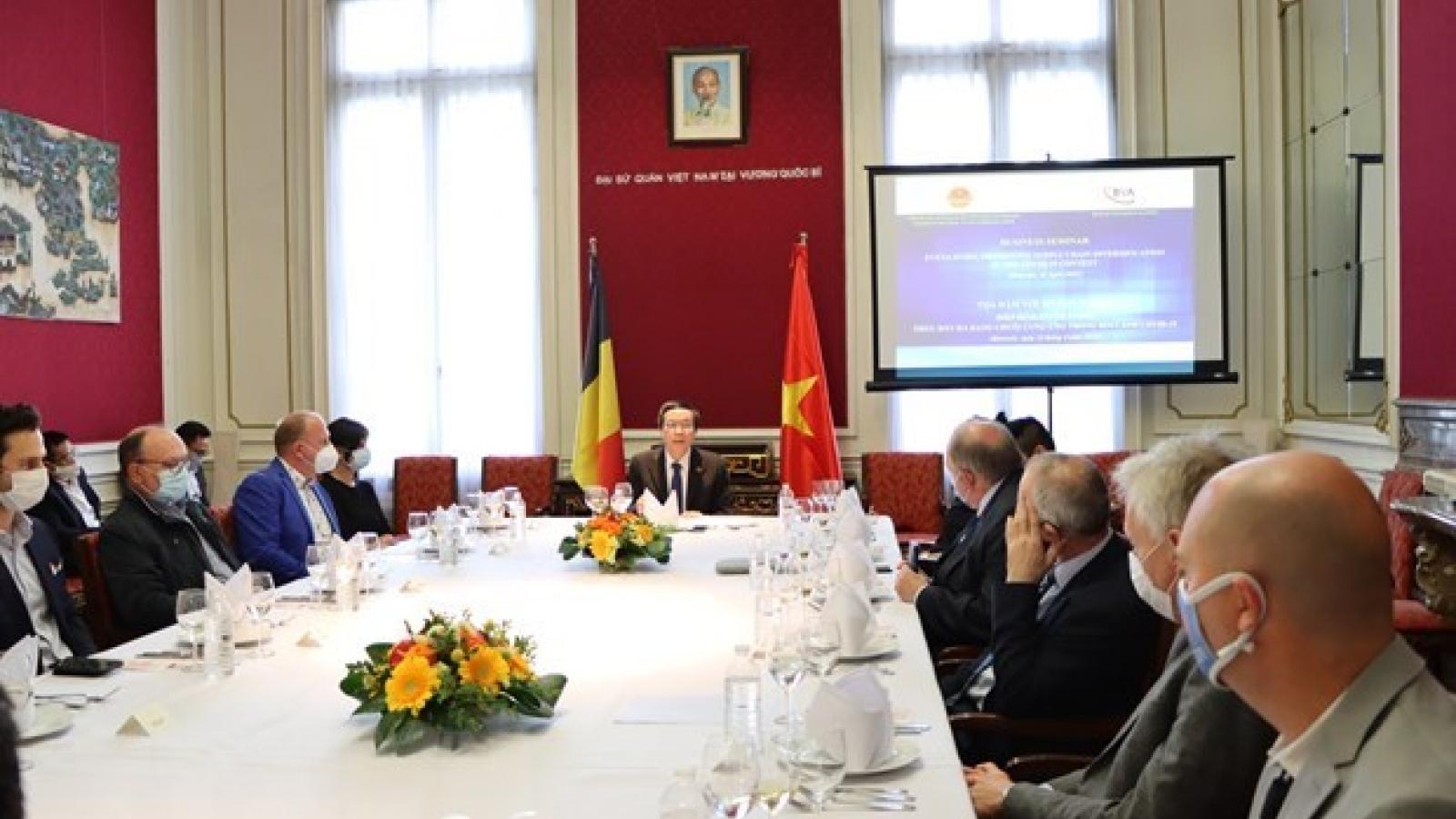 Belgium, Vietnam see growing multifaceted cooperation: Belgian politician