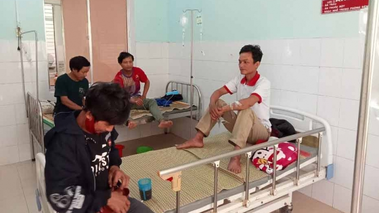 5 người ở huyện miền núi Nam Trà My bị ngộ độc do ăn nấm
