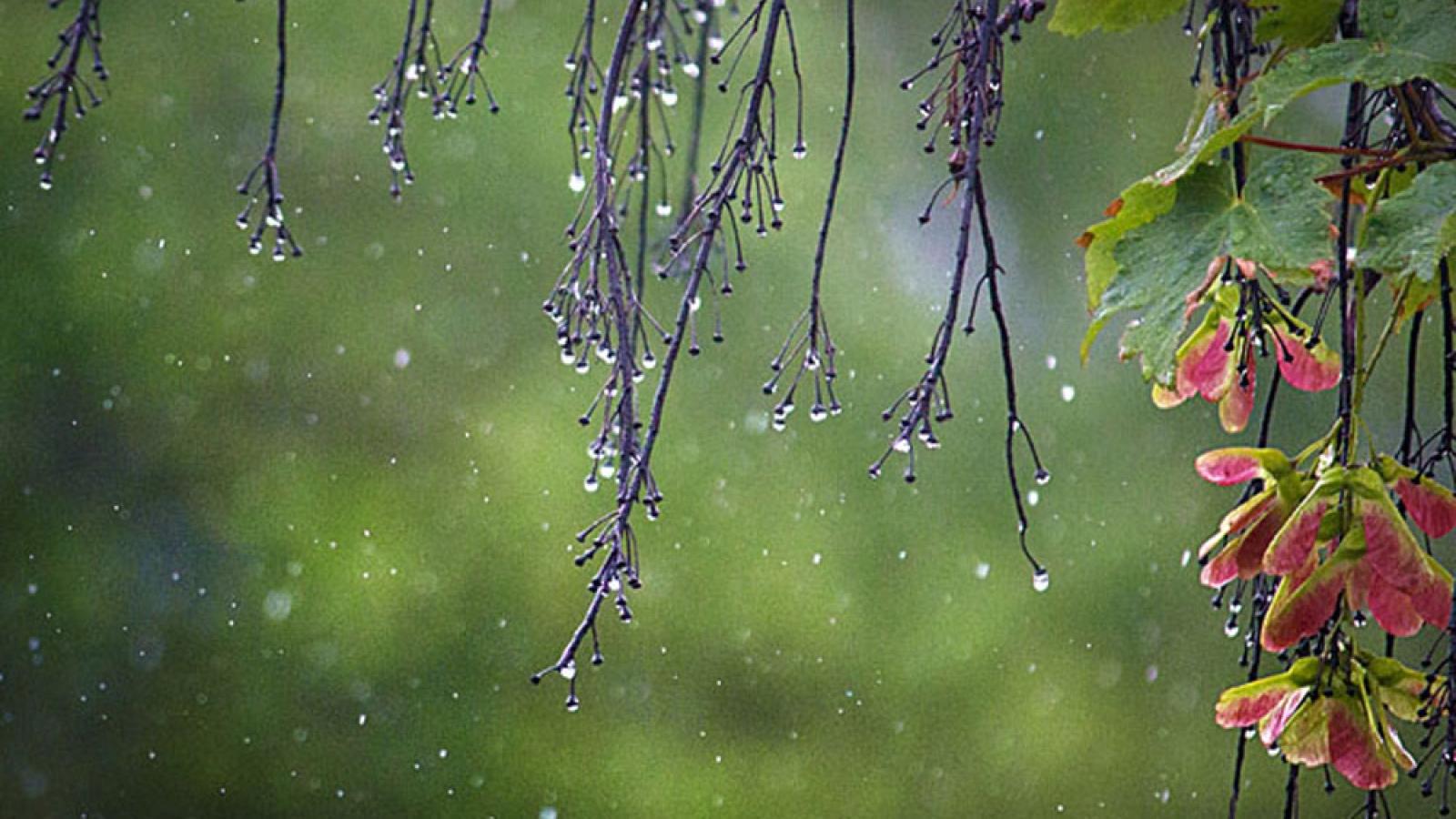 Hà Nội sẽ đón mưa, dông trong tuần tới