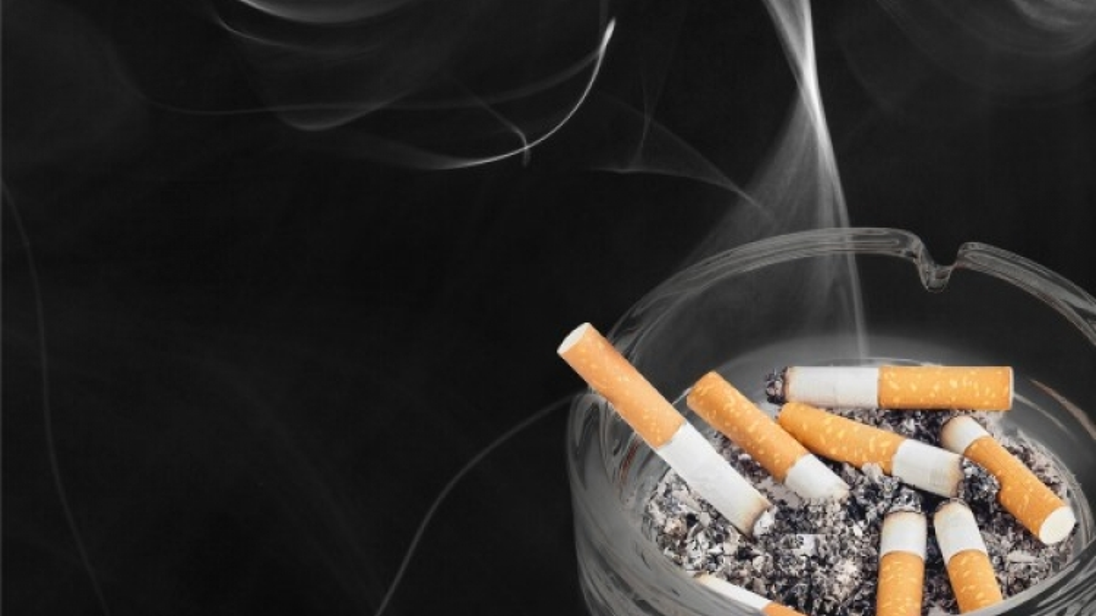 Mỹ cân nhắc buộc các nhà sản xuất giảm lượng chất gây nghiện trong thuốc lá