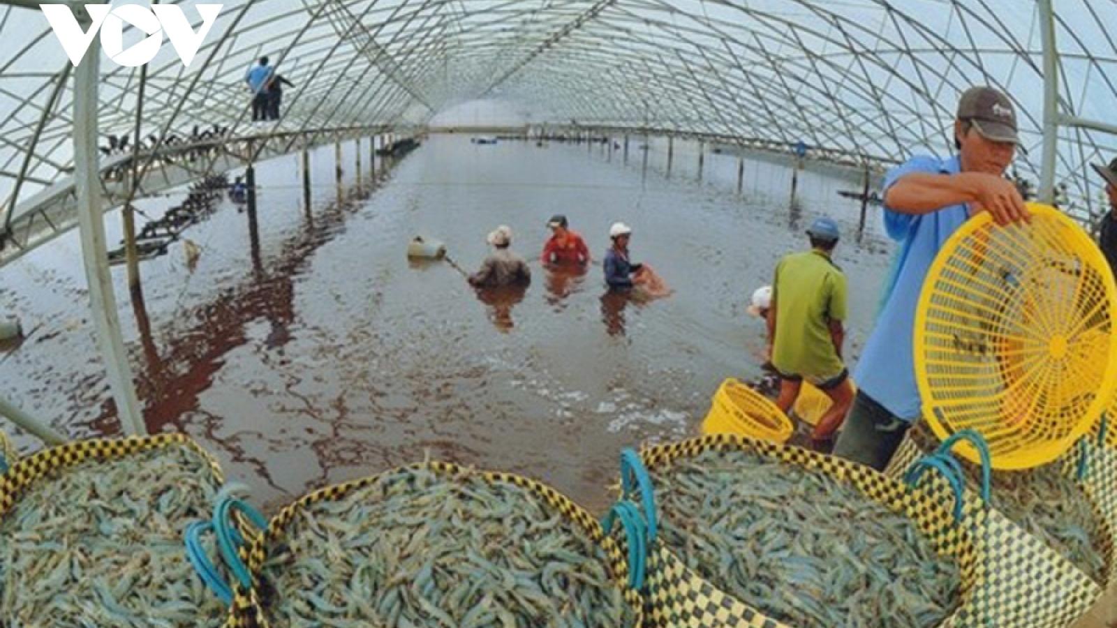 Giá thức ăn thủy sản và chăn nuôi tăng cao khiến doanh nghiệp thêm lao đao