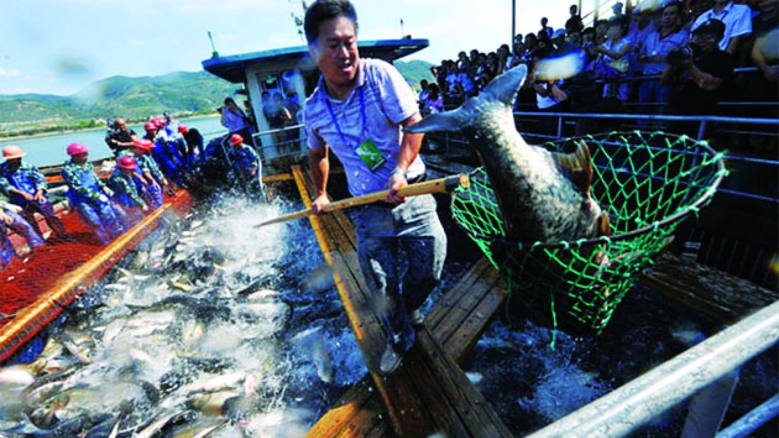 Trung Quốc đẩy mạnh phương pháp nuôi trồng thủy sản thân thiện môi trường
