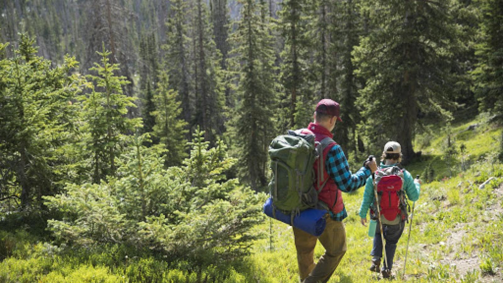7 lý do tại sao bạn nên đi bộ đường dài (hiking)