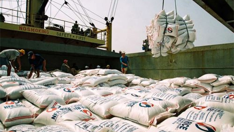 Vietnamese rice export prices fall to lowest level over five month-period
