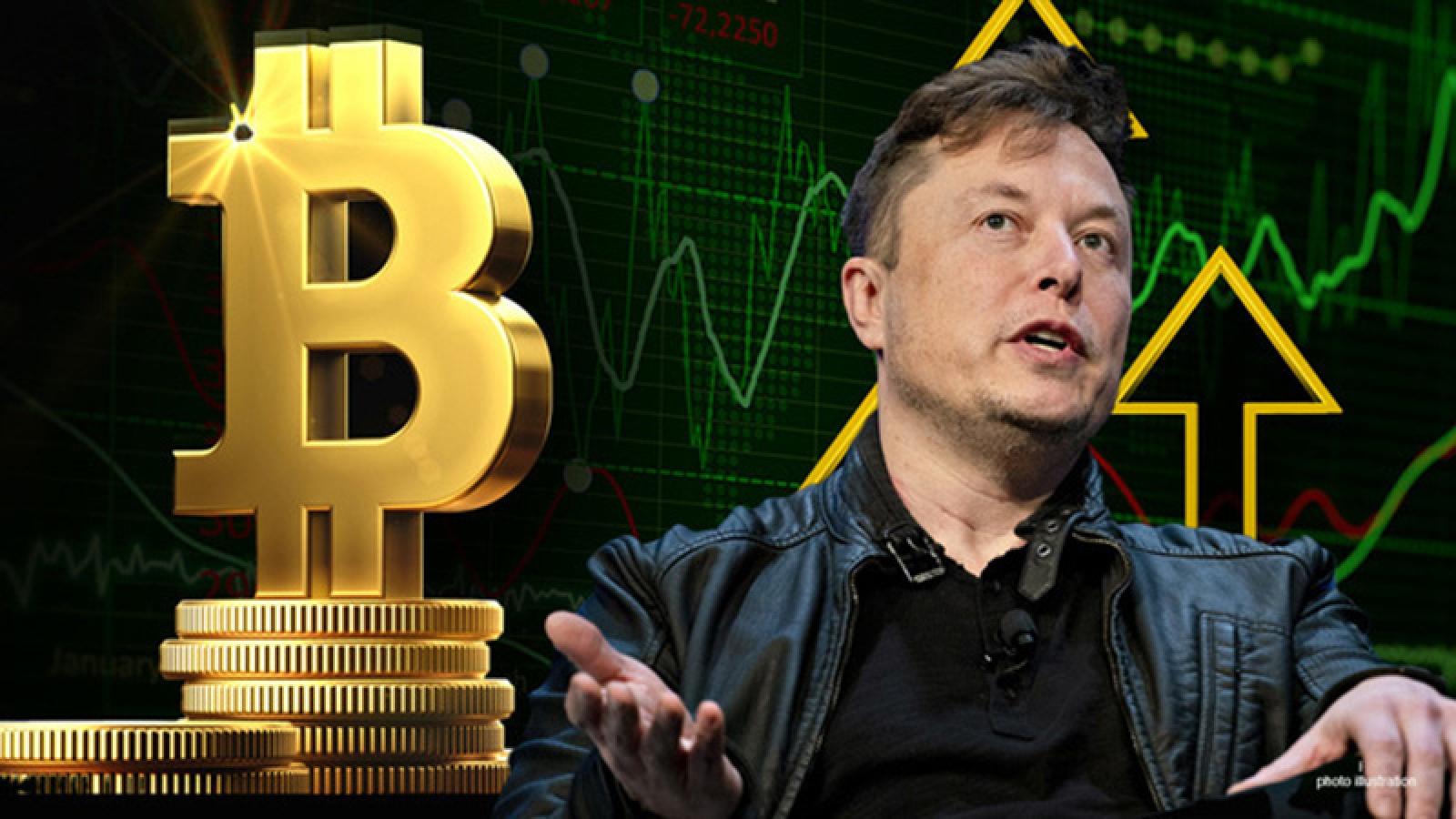 Bitcoin lại sụt giảm mạnh vì tweet của Elon Musk