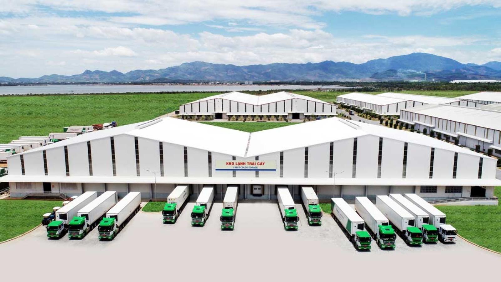 Logistics trọn gói cho nông nghiệp, THILOGI đưa nông sản Việt ra thế giới