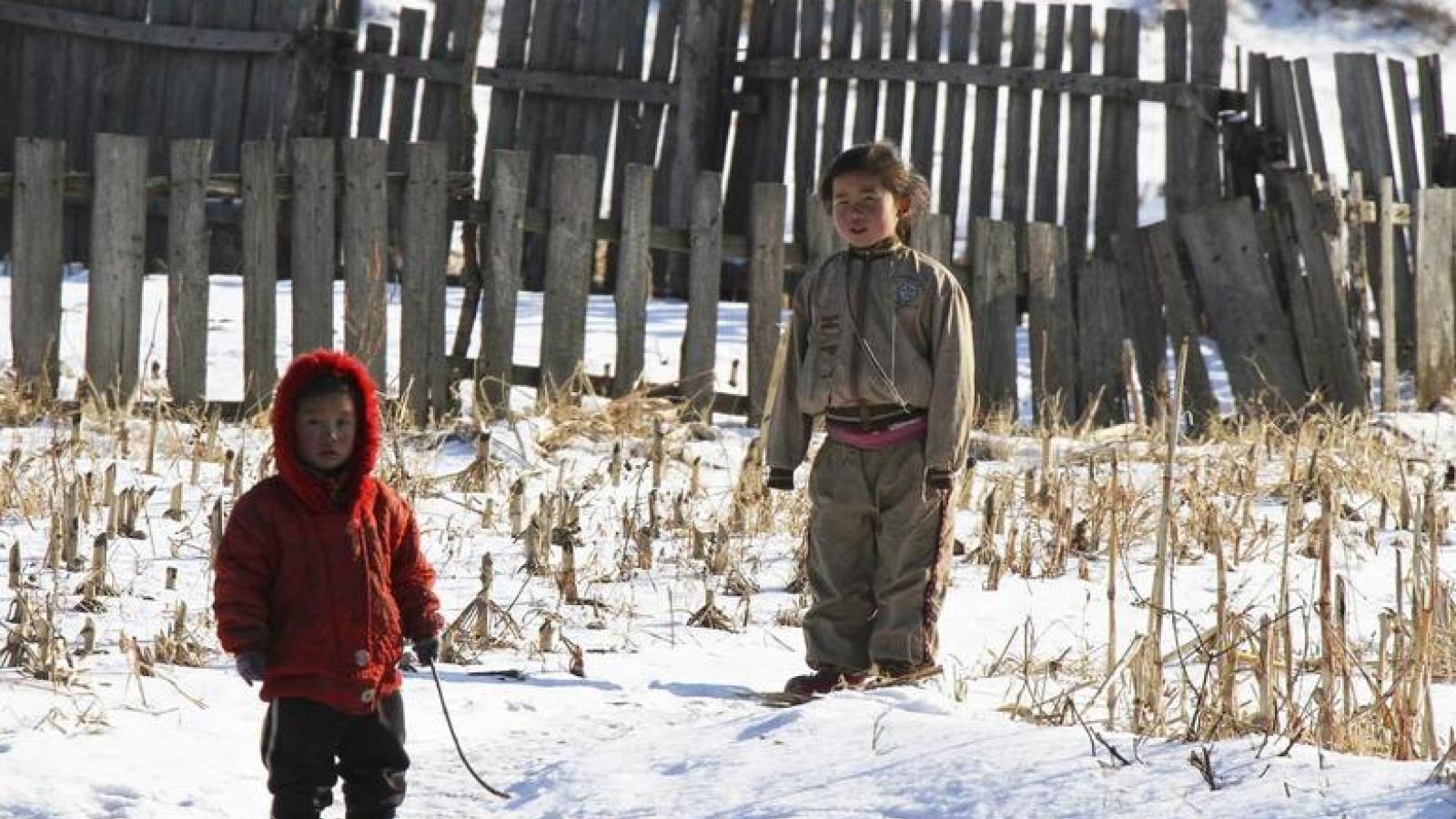 Gần 1/5 trẻ em Triều Tiên dưới 5 tuổi bị suy dinh dưỡng