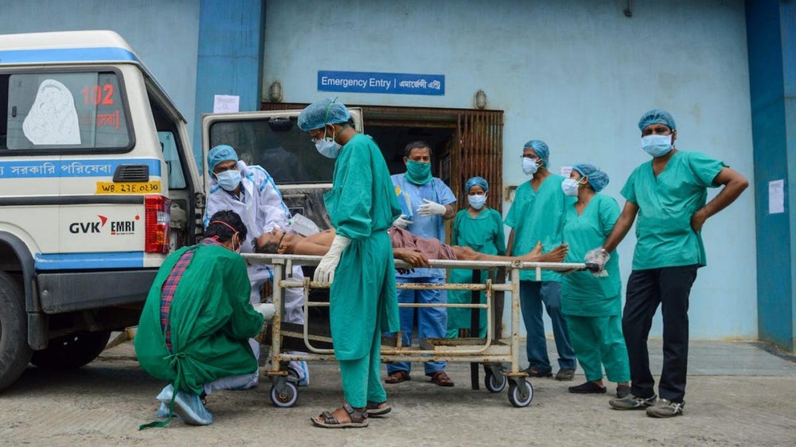Ấn Độ ghi nhận số ca tử vong do Covid-19 trong ngày cao nhất thế giới