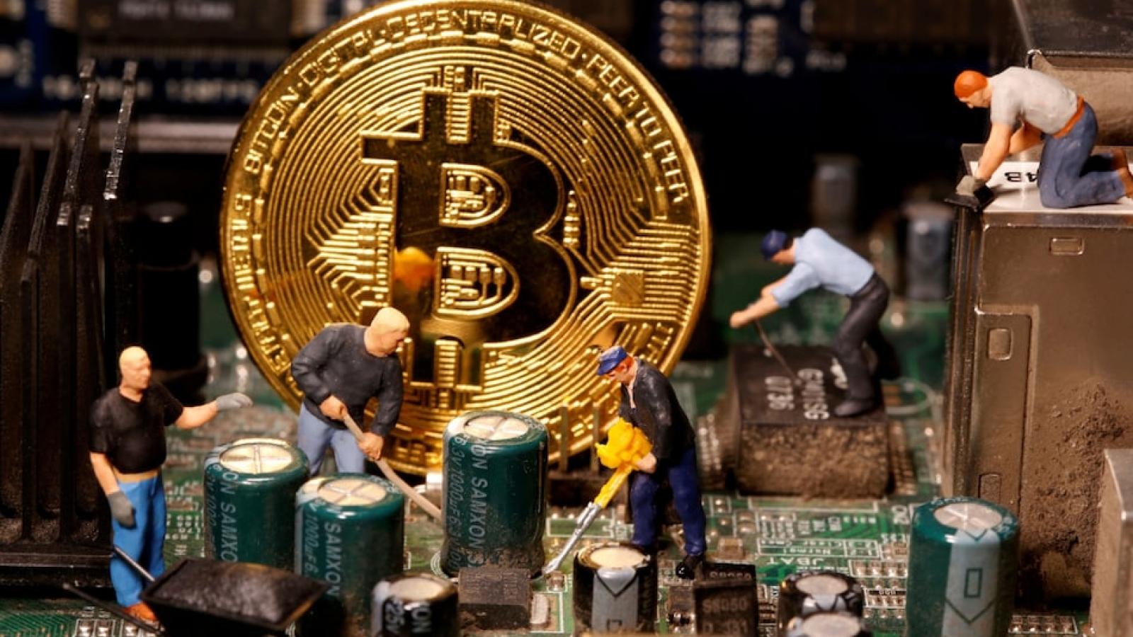 Bitcoin giảm giá chóng mặt và tương lai của tiền số