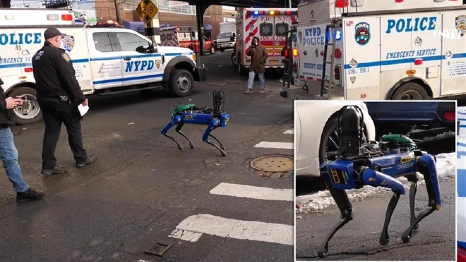 Chó robot tuần tra của cảnh sát bị dư luận phản ứng dữ dội