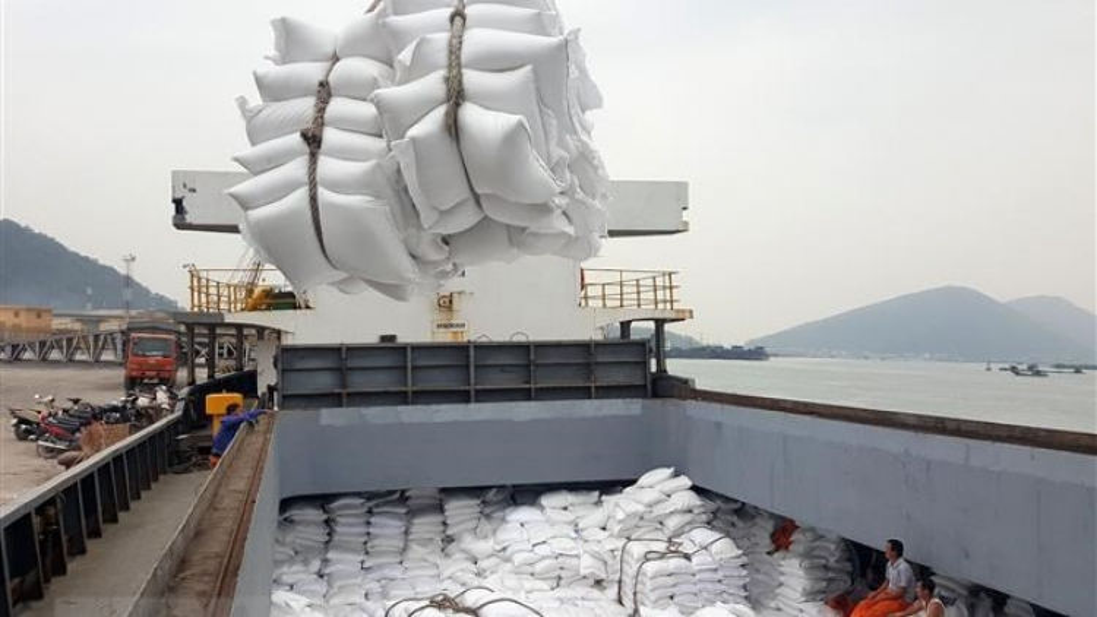 Vietnamese rice exports to China skyrocket