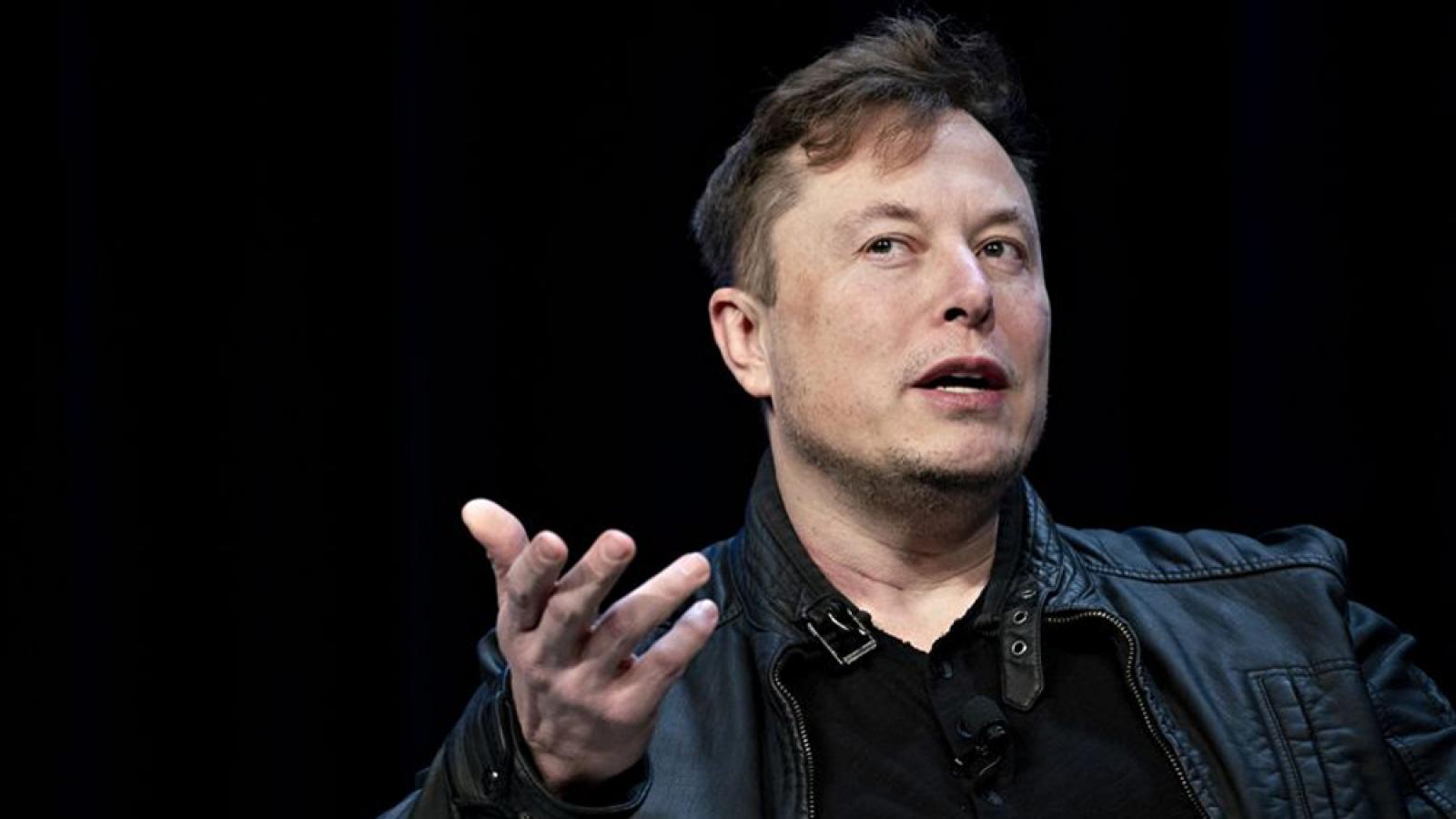 CEO Tesla Elon Musk mất vị trí giàu thứ hai thế giới