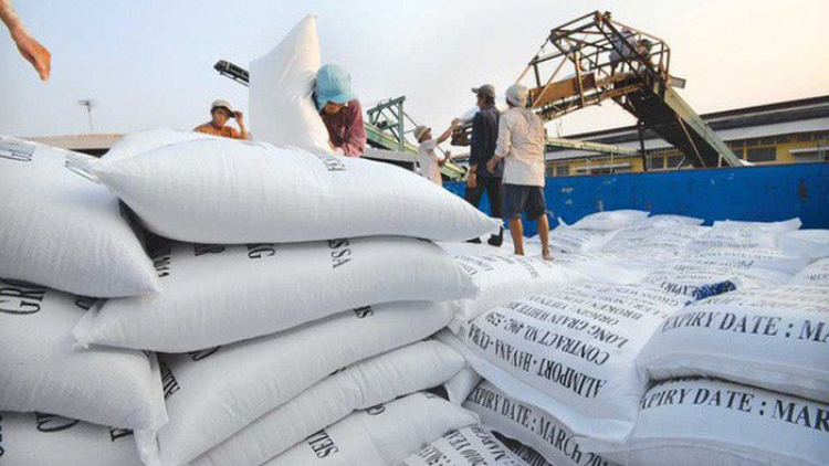 Philippines becomes largest export market for Vietnamese rice