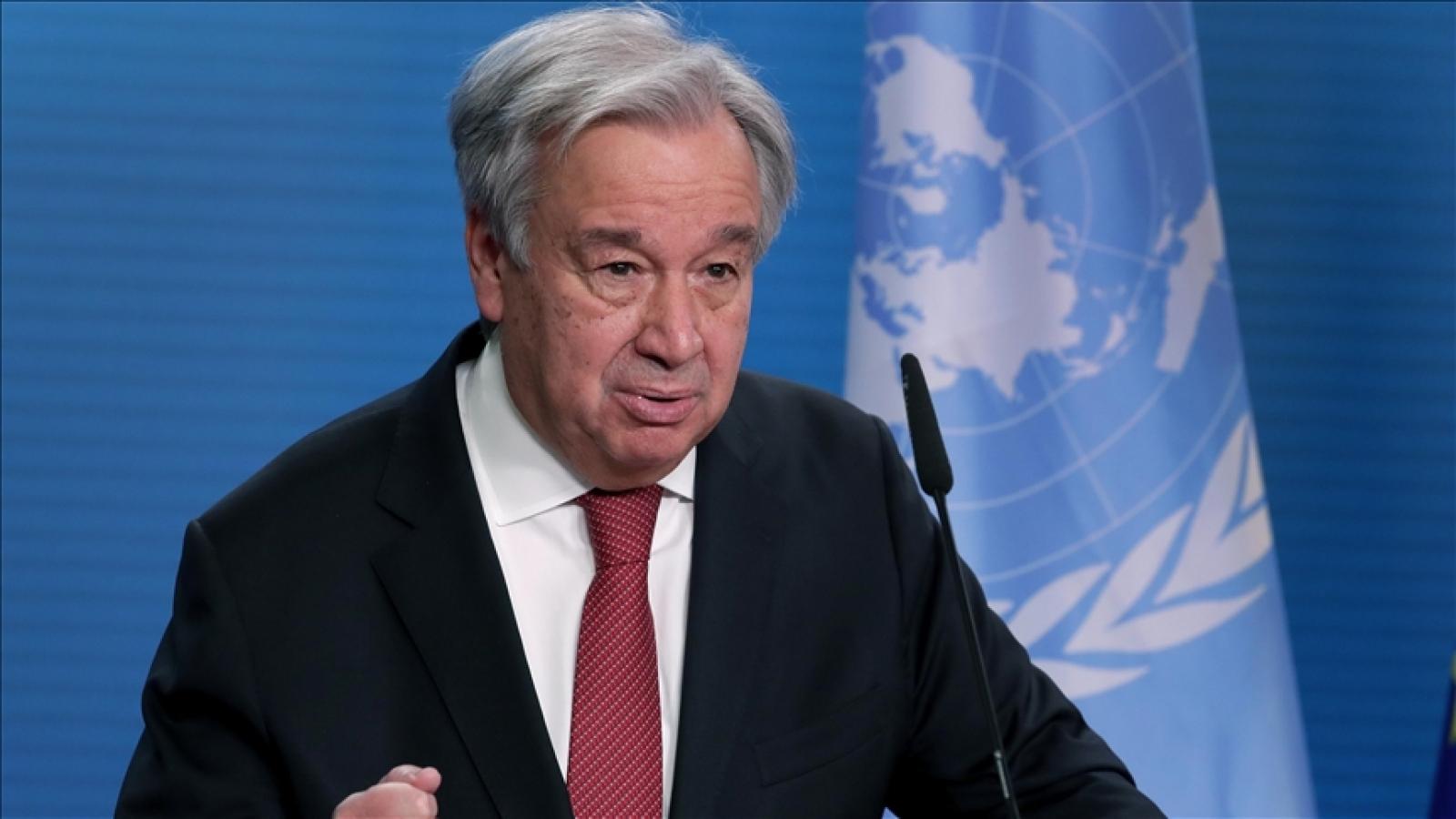 Tổng thư ký Liên Hợp Quốc hoan nghênh lệnh ngừng bắn giữa Israel và Gaza