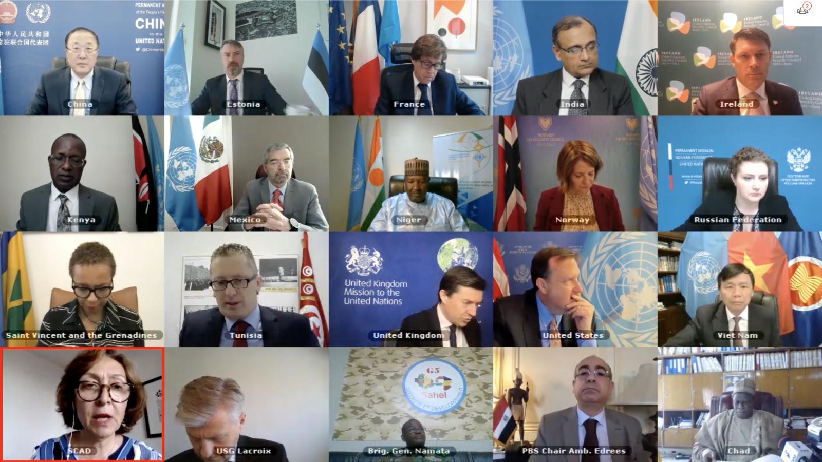 Hội đồng Bảo an thảo luận về hoạt động chống khủng bố giữa 5 nước khu vực Sahel