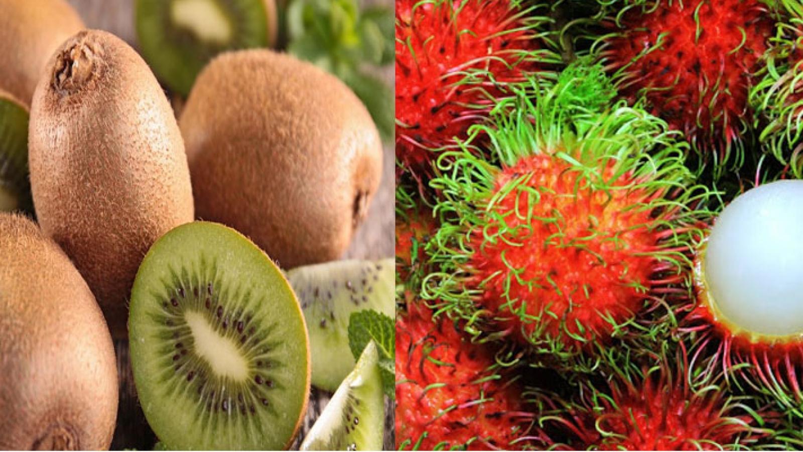 Chôm chôm Việt Nam có cơ hội tiếp cận thị trường Chile
