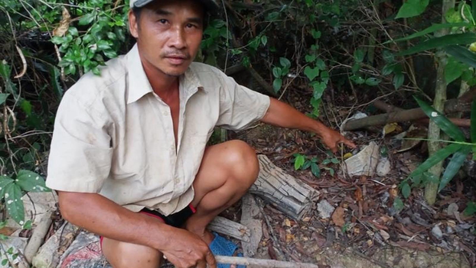 Người dân phát hiện lựu đạn trong vườn, sau nửa tháng chưa được thu gom