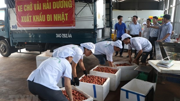 Measures put in place to bolster agricultural product exports