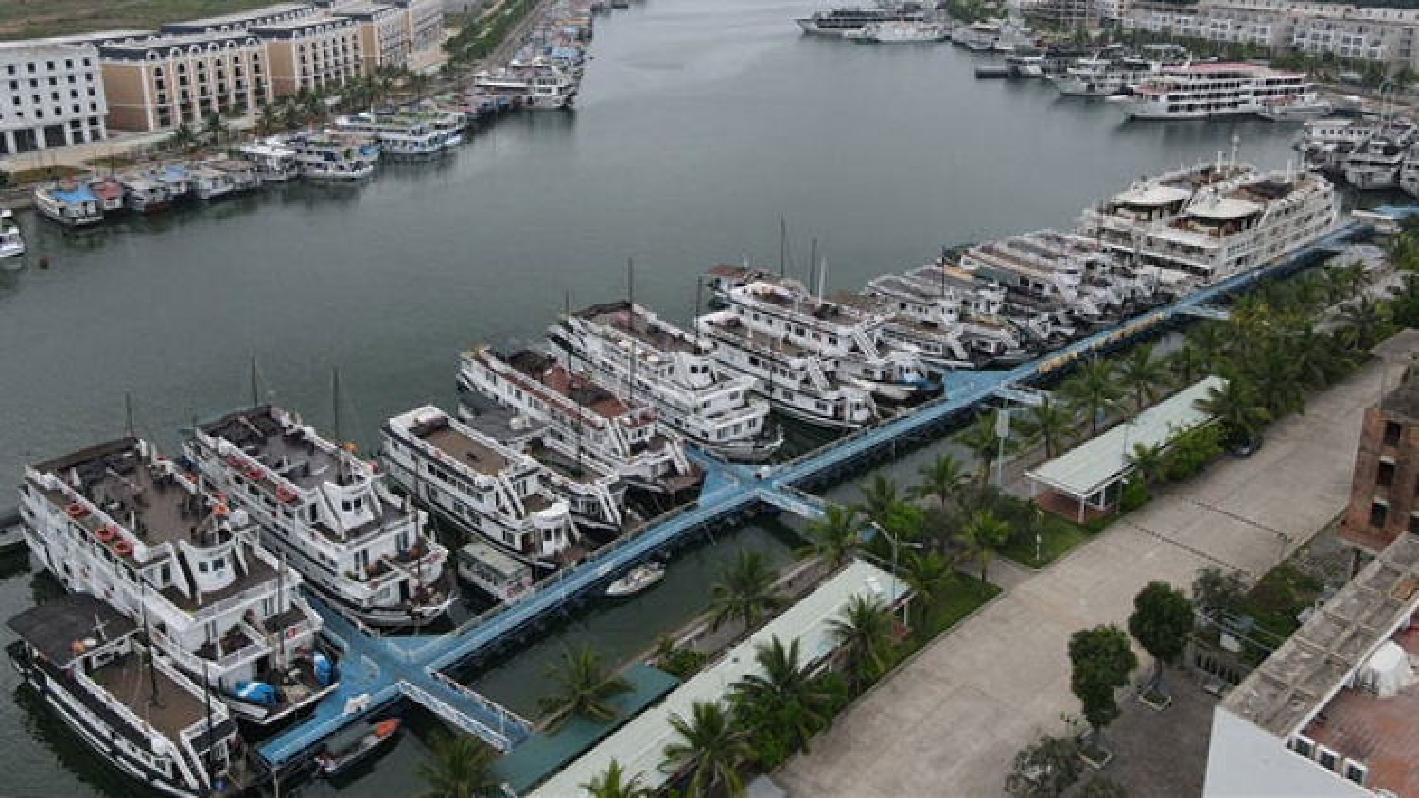 UNESCO-recognised Ha Long Bay falls quiet amid latest COVID-19 wave