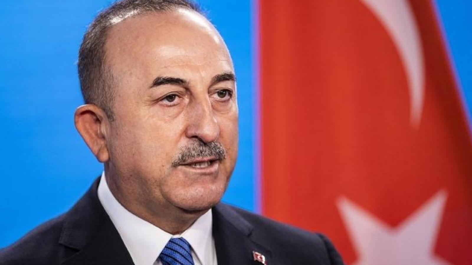 Thổ Nhĩ Kỳ nỗ lực hàn gắn quan hệ với các nước Arab