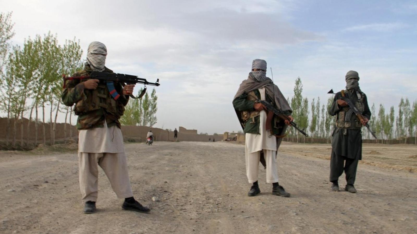 Taliban ngừng bắn 3 ngày trong lễ Eid-ul-Fitr ở Afghanistan
