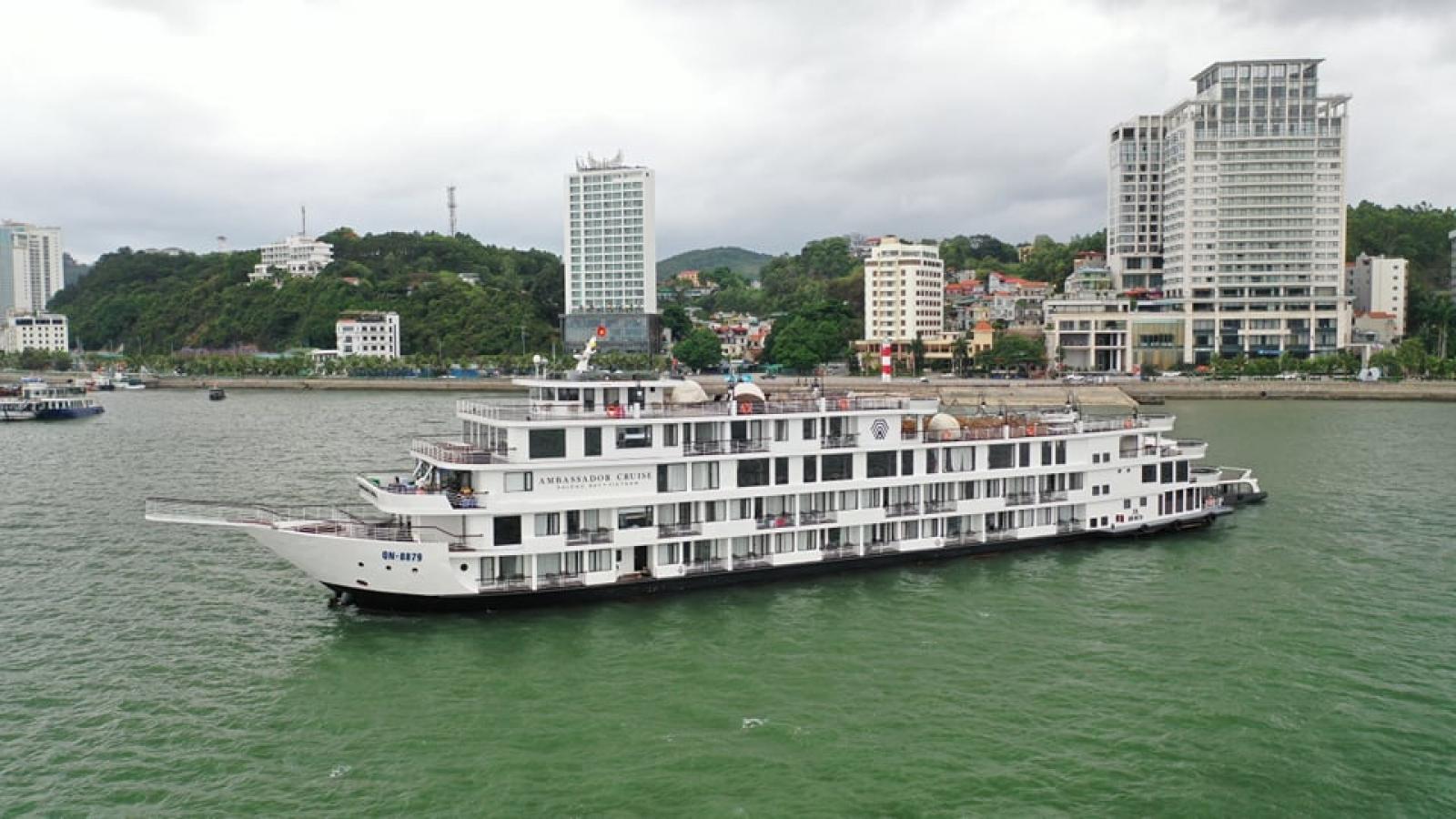 Quảng Ninh: Hơn 450 khách trên tàu Ambassador Cruise được theo dõi y tế