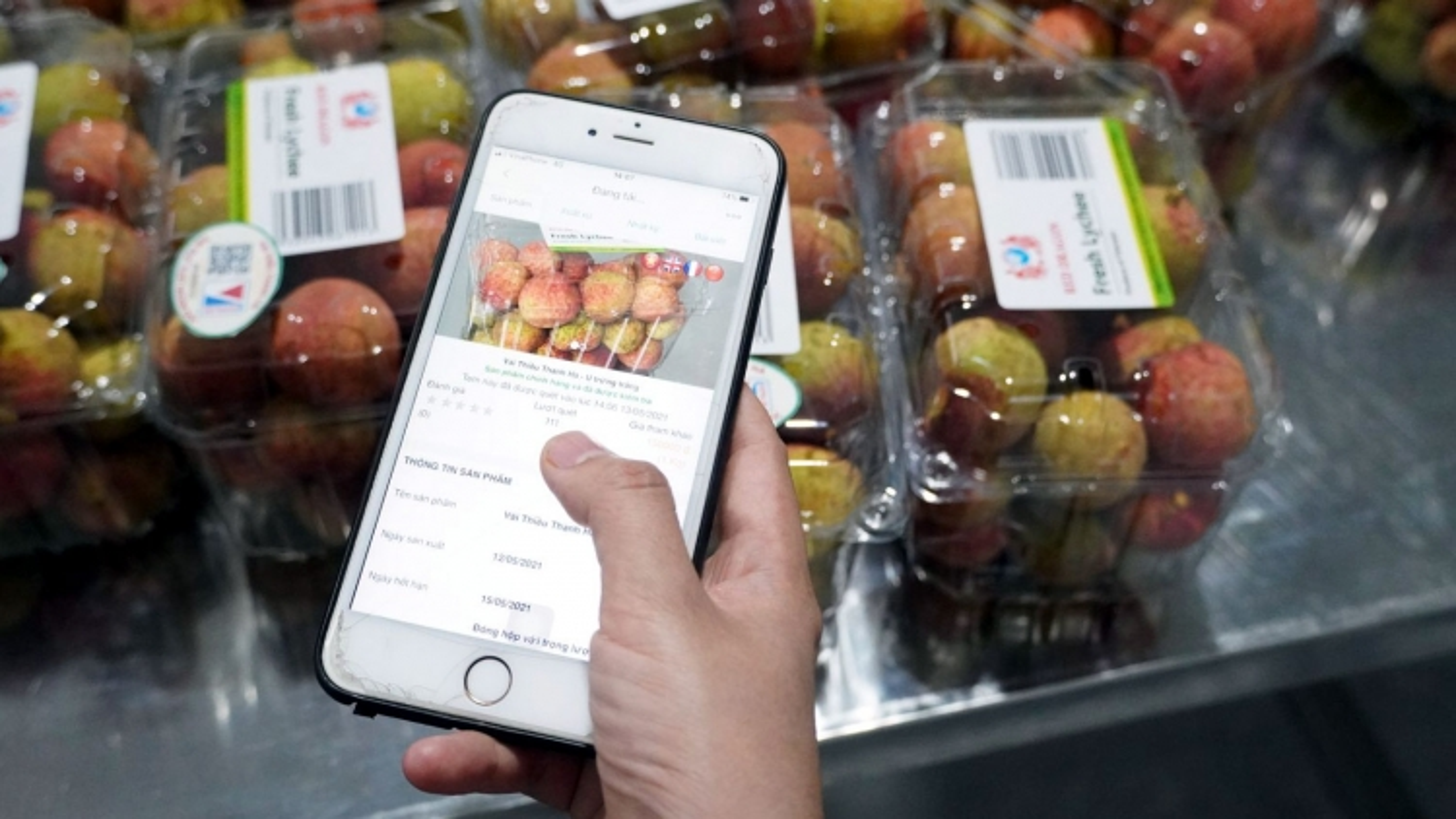 Quả vải Thanh Hà lên sàn thương mại điện tử: Quyết sách đúng đắn