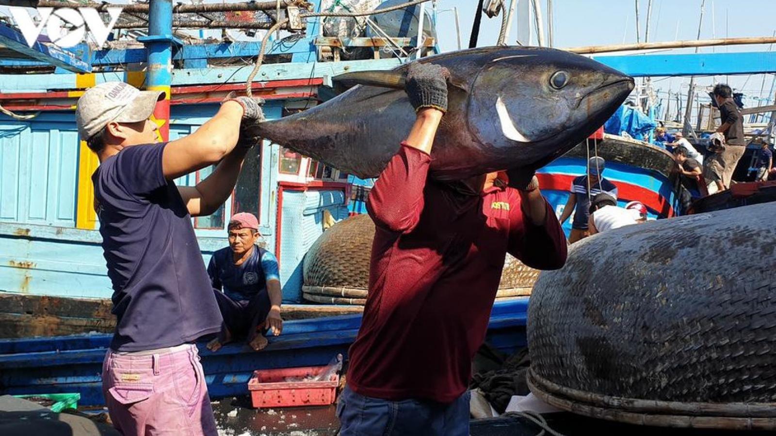 Xuất khẩu cá ngừ tăng mạnh trong tháng 4/2021