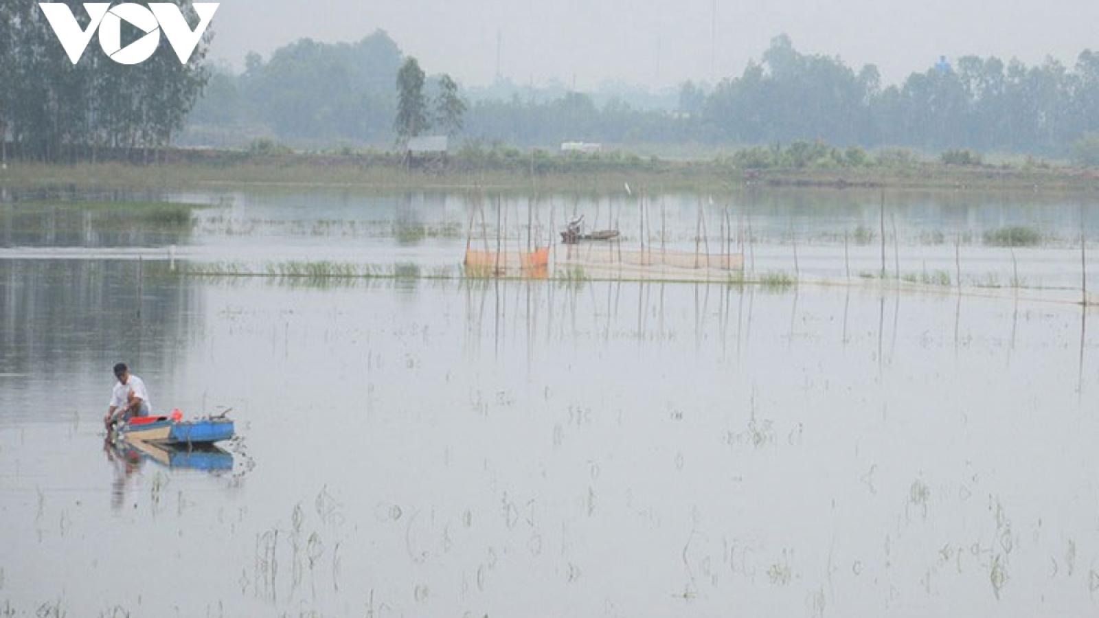 Đồng bằng sông Cửu Long: Xâm nhập mặn trở lại