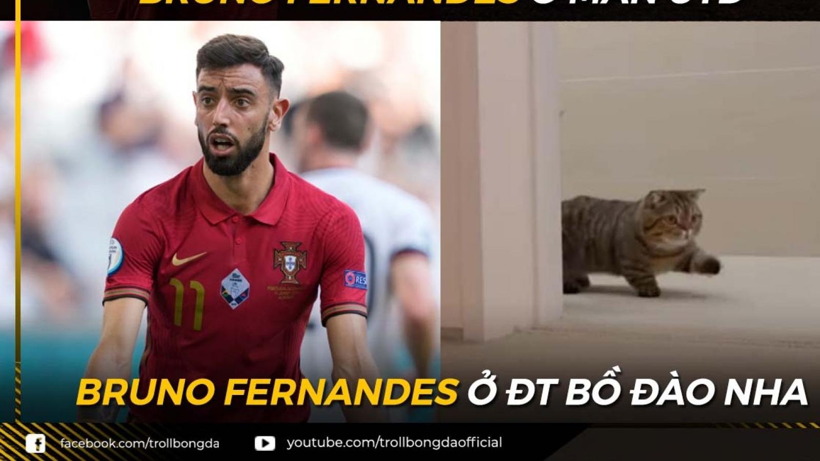 """Biếm họa 24h: Bruno Fernandes """"hóa mèo"""" ở ĐT Bồ Đào Nha"""